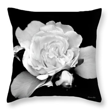 Throw Pillow featuring the photograph Rose Black And White by Christina Rollo