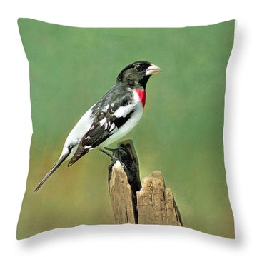 Rose Breasted Grosbeak Throw Pillow by Marion Johnson