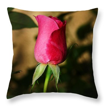 Rose Bud Throw Pillow by Anthony Jones