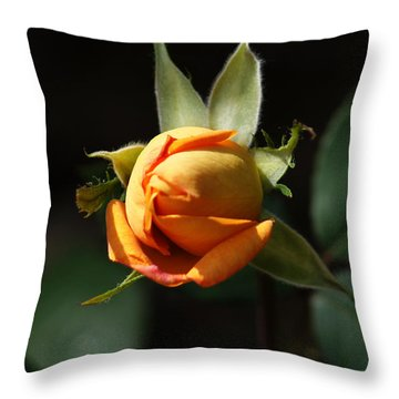 Rose Bud Throw Pillow by Debra Crank