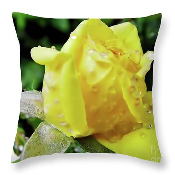 Rose Bud Dew Drops Throw Pillow