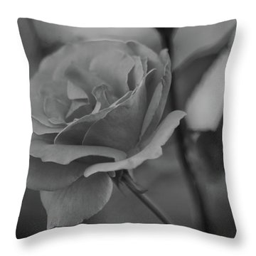 Rose Bw Throw Pillow