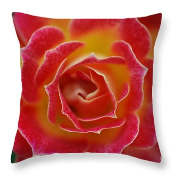 Rose Throw Pillow by Catherine Lau