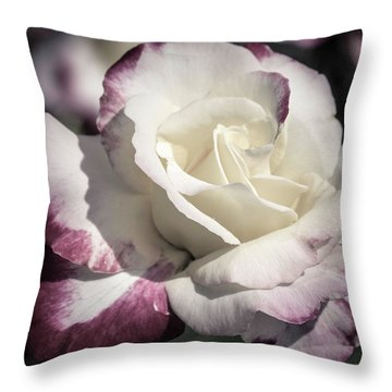 Rose Throw Pillow by Cathy Donohoue