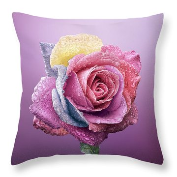 Rose Colorfull Throw Pillow by Bess Hamiti