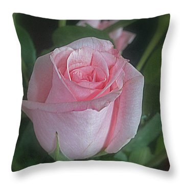 Rose Dreams Throw Pillow