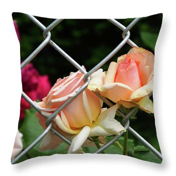 Rose Fence Throw Pillow