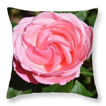 Throw Pillow featuring the photograph Rose Flower by Margarethe Binkley