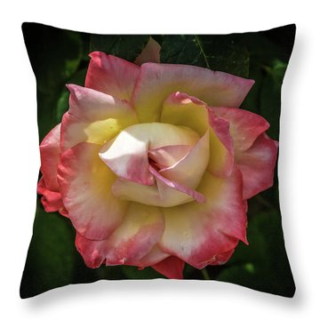 Rose From Mable Ringling's Garden Throw Pillow