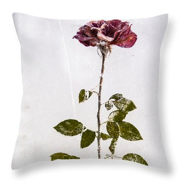 Rose Frozen Inside Ice Throw Pillow
