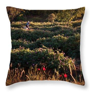 Rose Harvest Throw Pillow