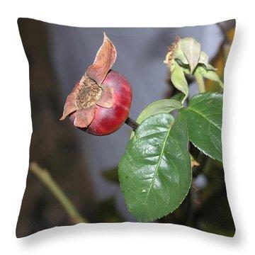 Rose Hip Throw Pillow