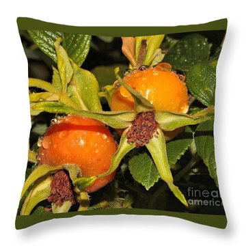 Throw Pillow featuring the photograph Rose Hips by Debbie Stahre