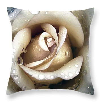 Rose In Gold With Water Drops Throw Pillow