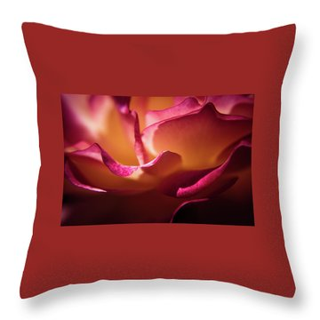 Rose In The Afternoon Throw Pillow