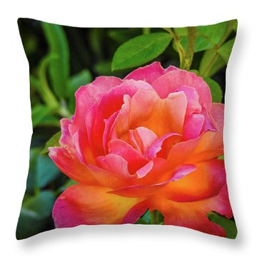 Rose In The Evening Throw Pillow