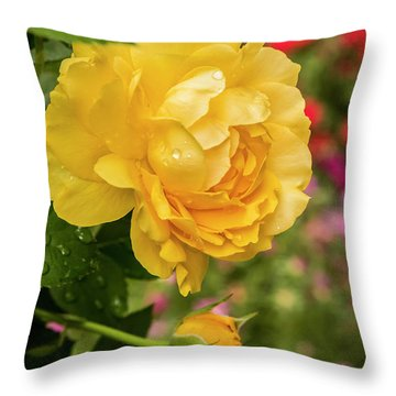 Rose, Julia Child Throw Pillow