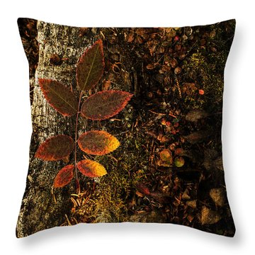 Rose Leaf And The Forest Floor Throw Pillow