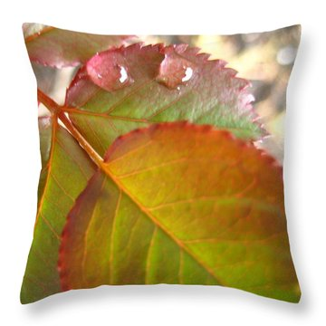 Rose Leaves Throw Pillow by Shirley Sirois