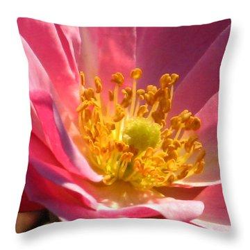 Rose Macro Throw Pillow