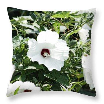 Rose Mallow Throw Pillow
