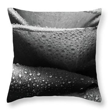 Rose Of Lines And Rain Throw Pillow