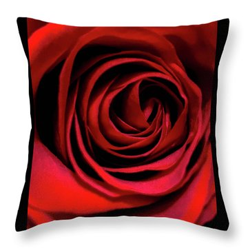 Rose Of Love Throw Pillow