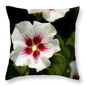 Throw Pillow featuring the photograph Rose Of Sharon by Christina Rollo