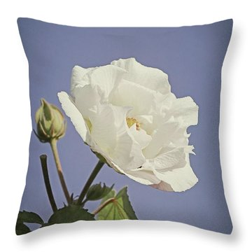 Throw Pillow featuring the photograph Rose Of Sharon by Elaine Teague