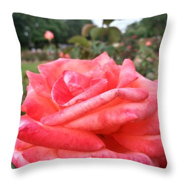 Rose Of Sharon - Faith Throw Pillow