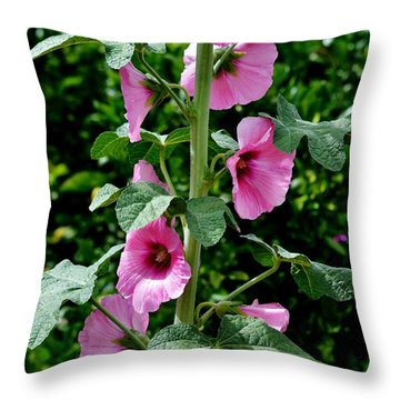 Rose Of Sharon Vine Throw Pillow
