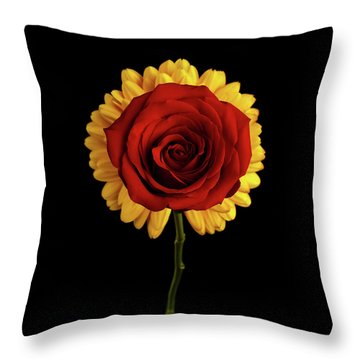 Rose On Yellow Flower Black Background Throw Pillow