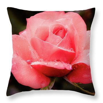 Throw Pillow featuring the photograph Rose Petals And Drops by Julie Palencia