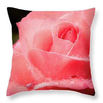 Throw Pillow featuring the photograph Rose Petals And Drops Macro by Julie Palencia