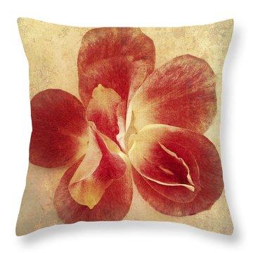 Throw Pillow featuring the photograph Rose Petals by Linda Sannuti