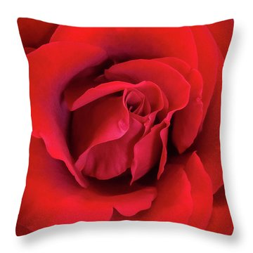 Rose Red 4 Throw Pillow