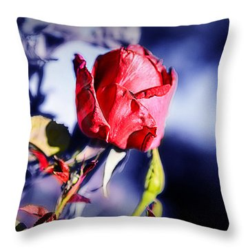 Throw Pillow featuring the photograph Rose by Ryan Smith