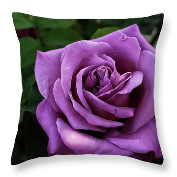 Navo Throw Pillows