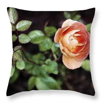 Throw Pillow featuring the photograph Rose by Stefan Nielsen