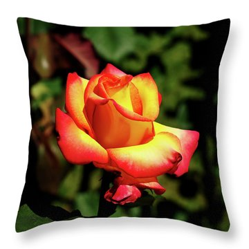 Rose To Remember Throw Pillow