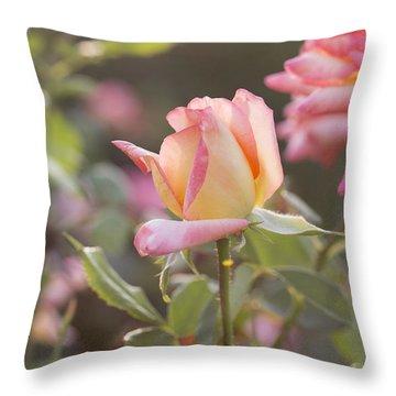 Rose Under Sunset Throw Pillow
