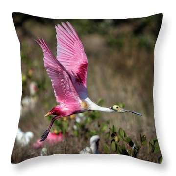 Roseate Spoonbill Flying Throw Pillow