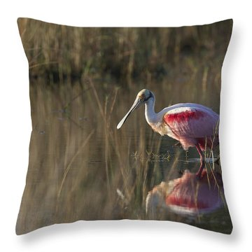 Roseate Spoonbill In Morning Light Throw Pillow