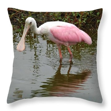 Roseate Spoonbill In Pond Throw Pillow