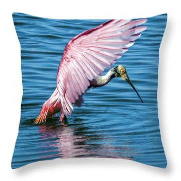 Roseate Spoonbill Landing Throw Pillow
