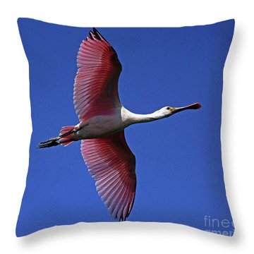 Roseate Spoonbill On The Wing Throw Pillow
