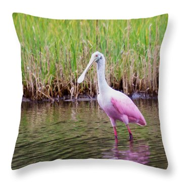Roseate Spoonbill  Throw Pillow by Patricia Schaefer