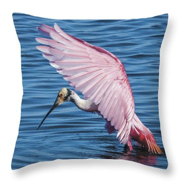 Roseate Spoonbill Profile With Wings Over Her Head Throw Pillow