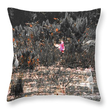Roseate Spoonbill Select Color Throw Pillow by Ken Figurski