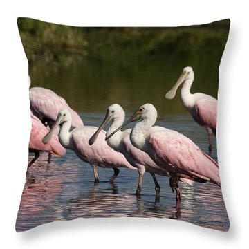 Roseate Spoonbills Throw Pillow by Sally Weigand